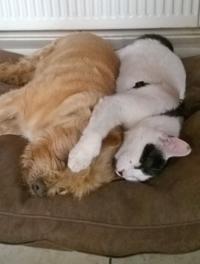 Just sharing warmth