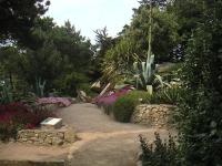Ilse de Batz Exotic Garden by  Georges Delaselle