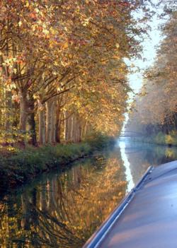 Autumnal views