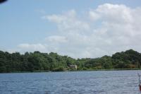 Across the bird sanctuary at Taden